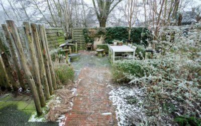 Winterbeelden achteruin Earnewald