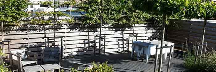 Kindvriendelijke tuin: strakke stadstuin - Elverdink Hoveniers