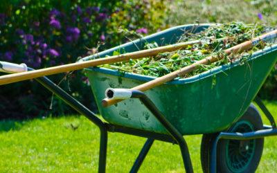 Maart: tuinonderhoud